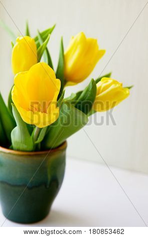 Bunch of yellow tulips in ceramic vase on a window spring morning.