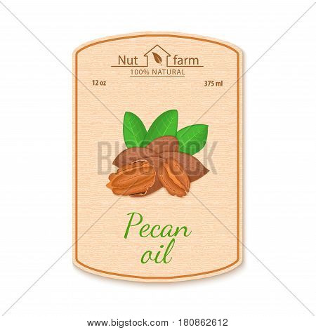 Vector pecan nut oil lable. Composition of filbert nut. Design of a sticker for jar walnut nut oil, pecan nut butter. Sticker in retro style with texture for your design.