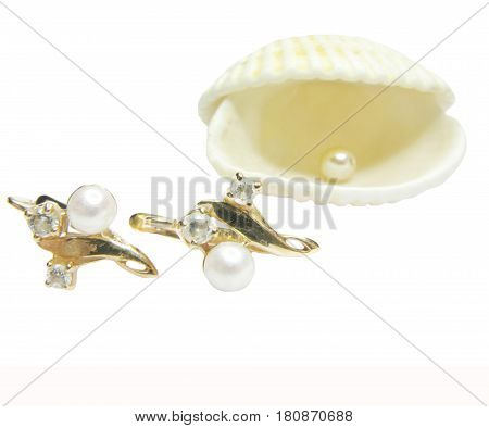 gold earrings and ses shell with pearl