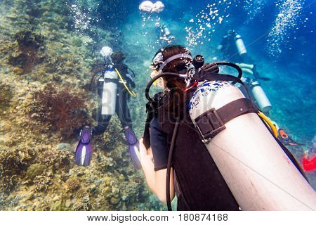 Divers scuba diving looking at sea turtle and fish under water