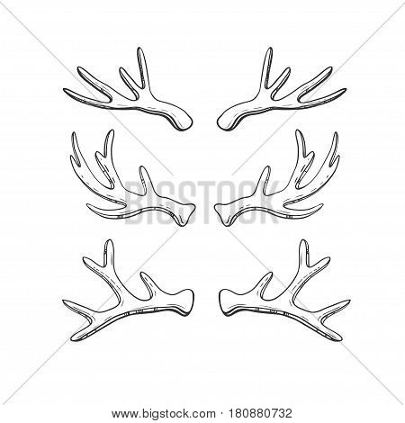 Set of hand drawn deer horns isolated on white. Vector illustration in rustic style.