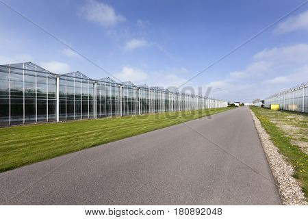 Asphalt road and greenhouses in Westland in the Netherlands
