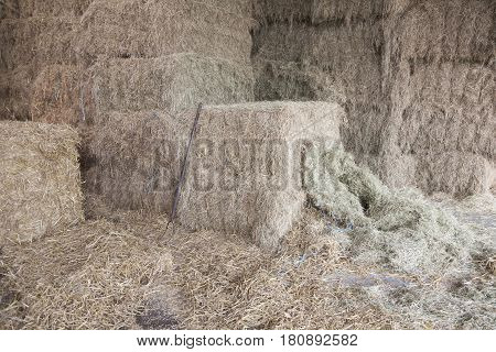 hay stack and hay form with some straw on the side on organic farm in the netherlands