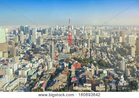 Tokyo sky line cityscape with Tokyo Tower