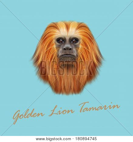 Vector Illustrated portrait of Golden lion tamarin monkey. Cute fluffy face of primate on blue background.