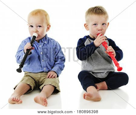Two adorable toddler boys playing recorders side by side.  On a white background.