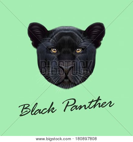 Vector Illustrated portrait of Black panther. Cute fluffy face of Big cat on green background.