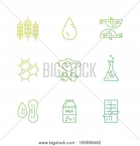 Collection of food allergens made in line style vector. Food intolerance symbols for restaurants, farm markets and menu. Special diet illustration.