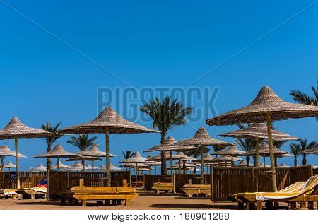 summer vacation in paradise. tropical green palm trees with evergreen leaves and wicker umbrellas parasols or sunshades on bright sunny day on idyllic blue sky background