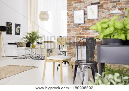Designer Chairs In Room