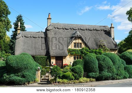 Chipping Campden, UK - August 30, 2013: An English thatched cottage built out of Cotswold stone with a beautiful hedge in the garden in Chipping Campden the Cotswolds England UK.