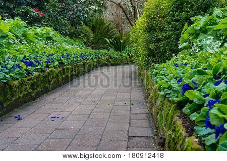 Garden Path With Flowerbeds And Bushes