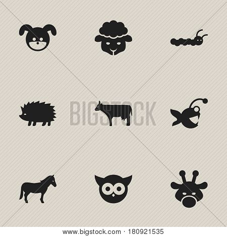 Set Of 9 Editable Zoo Icons. Includes Symbols Such As Fish, Larva, Night Fowl And More. Can Be Used For Web, Mobile, UI And Infographic Design.