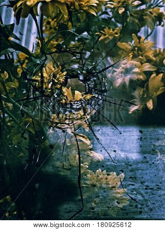 A hole from a bullet in the glass and yellow flowers. Multiple exposure.