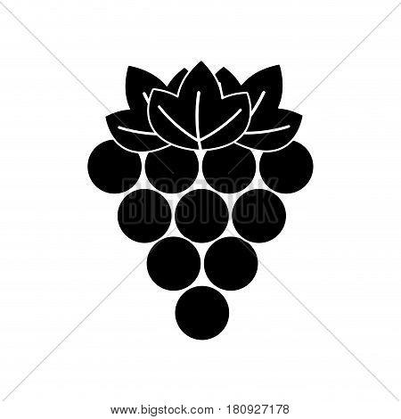 black contour grapes fruit icon image, vector illustration design stock