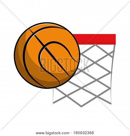 basketball and basket with the ball icon, vector illustration design