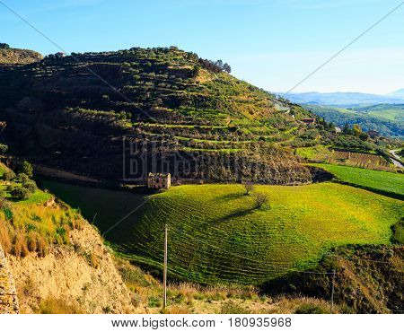 View of typical sicilian countryside in the winter season