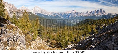 View of meadow Larch wood Le Tofane Gruppe and Hohe Gaisl Dolomiti Italy