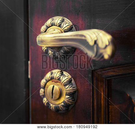 The door handle in classical style. Metal handle