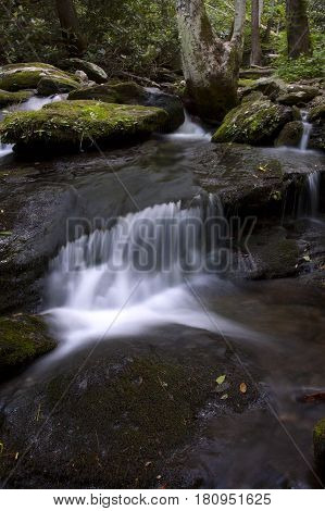 The cascading waters of a creek in the woods in eastern Tennessee