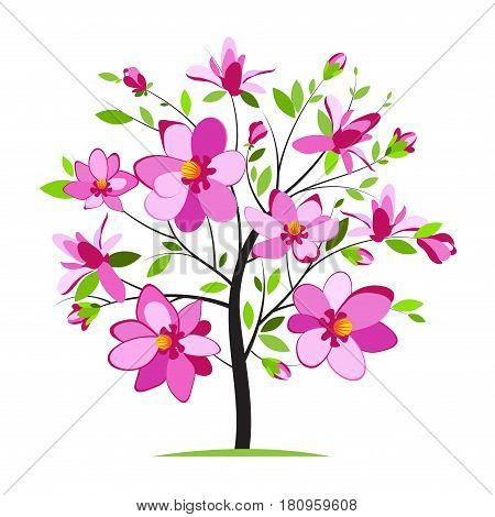 Blossoming magnolia tree on white background, vector illustration