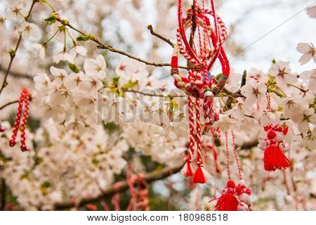 Red oriental ornamentals on a blooming cherry tree. bulgarian style.