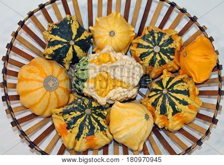 Wooden Basket of Yellow Orange and Green Winter Squash