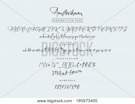 Amsterdam Handwritten script font. Brush font. Uppercase, lowercase, numbers, punctuation and a lot of ligatures