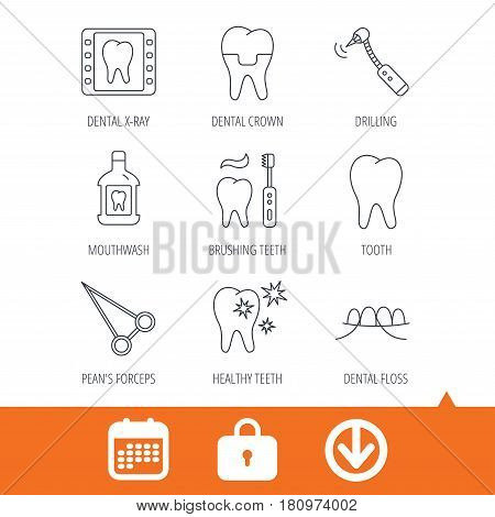 Stomatology, tooth and dental crown icons. X-ray, mouthwash and dental floss linear signs. Toothache, forceps icons. Download arrow, locker and calendar web icons. Vector
