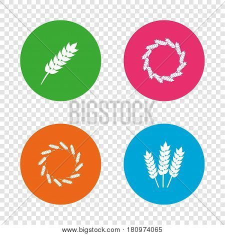 Agricultural icons. Gluten free or No gluten signs. Wreath of Wheat corn symbol. Round buttons on transparent background. Vector