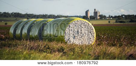 Bales Of Cotton In Oakey, Queensland