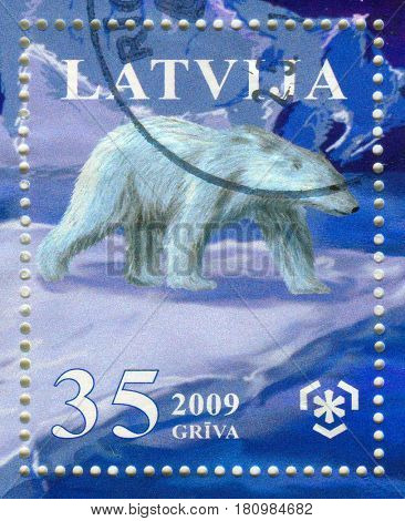 GOMEL, BELARUS, APRIL 8, 2017. Stamp printed in Latvia shows image of  The polar bear (Ursus maritimus) is a carnivorous bear whose native range lies largely within the Arctic Circle, circa 2009.