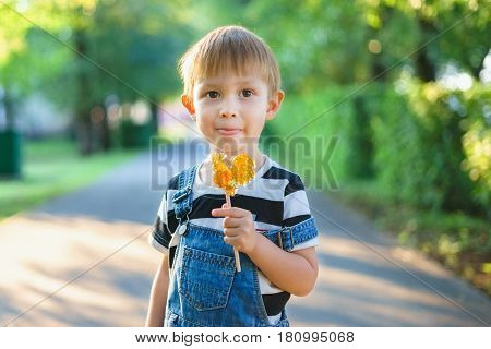 The boy is holding a lollipop in his hand. Lollipop in the form of cockerel caramel sugar candy