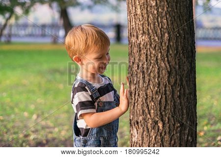 The boy is standing by the tree in the park. The child hands clings to the trunk of the tree examines the bark and smiles.