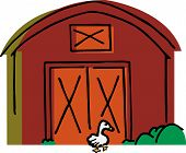 Big white goose walks by a red barn and bushes poster