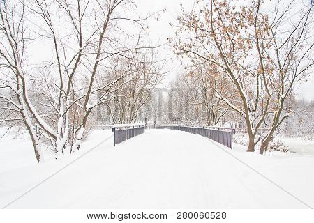 Trees And Bridge In The Park In Winter