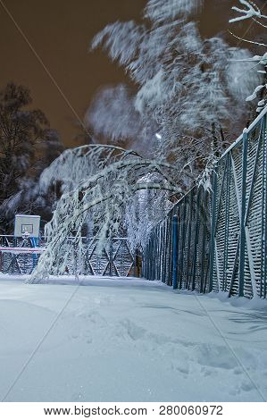 Playground And Trees In The Snow In The Evening