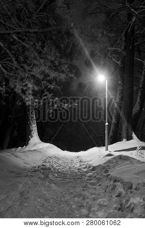 Street Lamp And Trail In The Snow Black And White