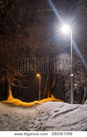 Street Lamp And Trail In Snow In The Winter Park In The Evening