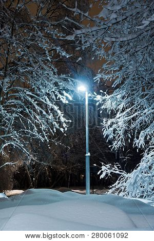 Street Lamp, Trees And Snowdrifts In The Winter Park