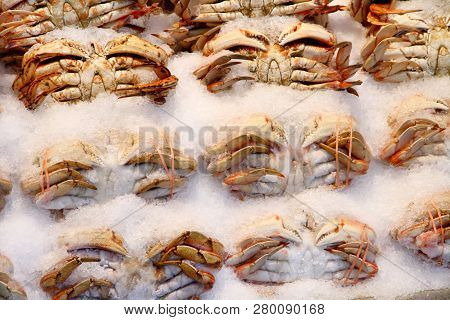 Crabs Sitting In Ice And For Sale In A Public Market.