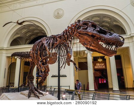 Chicago, Il, Usa - May 25, 2018: Sue, The Most Complete T Rex Ever Unearthed, Is On Display At The F