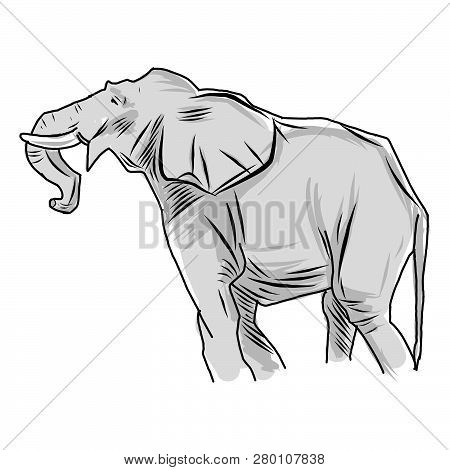 Elephant Sketches In Color And Lines. Simple Elephants On White Background. Cute Elephant. Vector Il