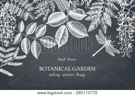 Botanical Design 2