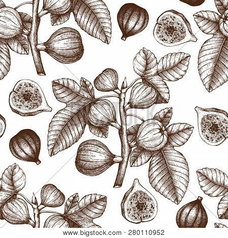 Seamless Pattern With Hand Drawn Figs Sketch. Vector Background With Engraved Fig Fruit Branch. Vint
