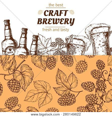 Craft Brewery Banner Template With Hand Drawn Hops And Beer. Illustration Of Brewery Beer Alcohol, P
