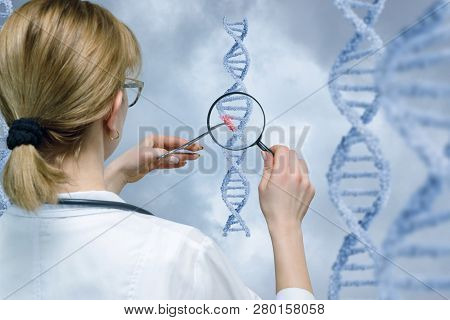 A Laboratorian Standing Backside Is Holding Dna Model With Medical Clamp And Examining It Through A