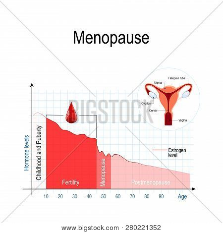 Menopause Chart. Estrogen Level And Aging.