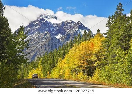 Autotravel on the north in reserves among woods and mountains