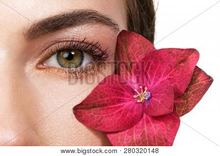 Woman eye and pink flower closeup